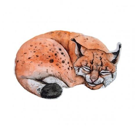 Poduszeczka - Lynx